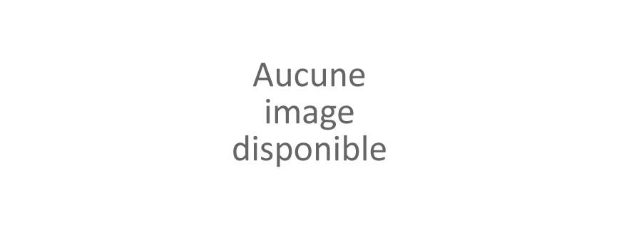 RENE BLANCHE